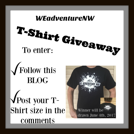 blog giveaway.png